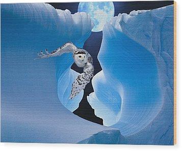 White Owl Wood Print by Jack Zulli