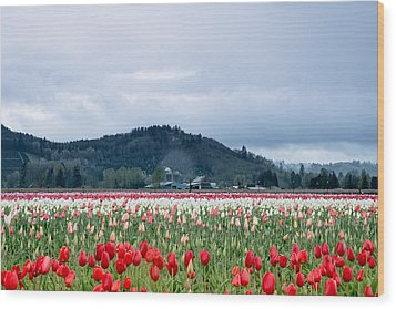 White Pass Highway With Tulips Wood Print