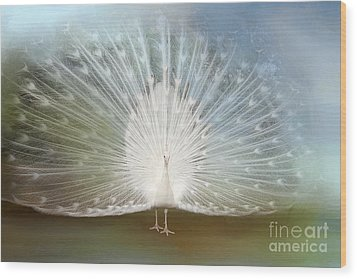 Wood Print featuring the photograph White Peacock In All His Glory by Bonnie Barry
