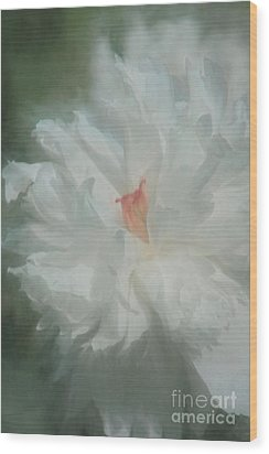 Wood Print featuring the photograph White Peony by Benanne Stiens