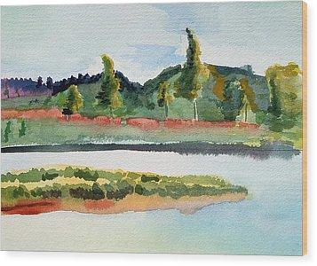 White River At Royalton After Edward Hopper Wood Print