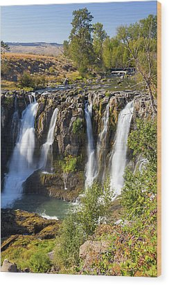 White River Falls In Tygh Valley Wood Print by David Gn