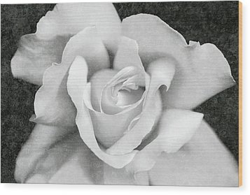 Wood Print featuring the photograph White Rose Macro Black And White by Jennie Marie Schell