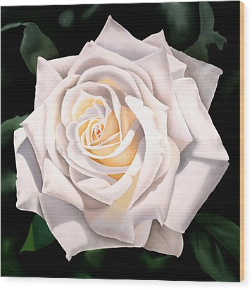 White Rose Wood Print by Ora Sorensen