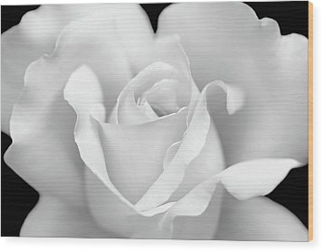 Wood Print featuring the photograph White Rose Purity by Jennie Marie Schell