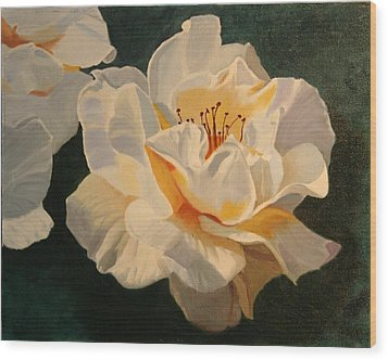 White Rose Wood Print by Robert Tower
