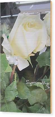 White Rose - Sympathy Card Wood Print