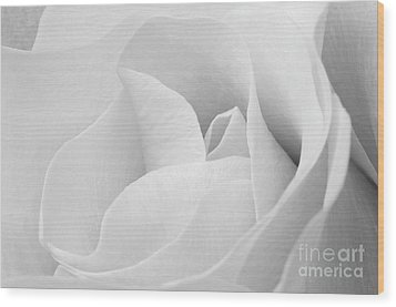 White Rose Visit Www.angeliniphoto.com For More Wood Print by Mary Angelini
