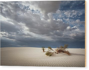 White Sands Wood Print by James Barber