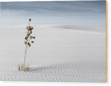 White Sands Wood Print by Mike Irwin
