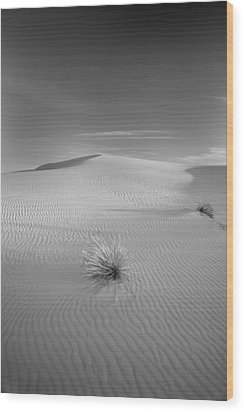 White Sands Wood Print by Peter Tellone