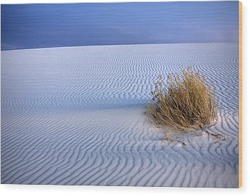 White Sands Scrub Wood Print by Peter Tellone