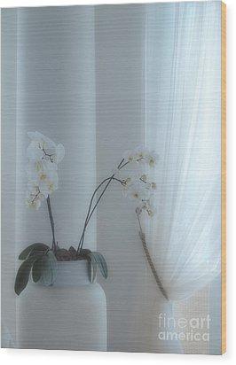 White Series Soft Wood Print by Joyce Hutchinson