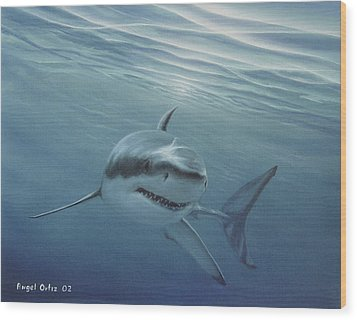 White Shark Wood Print by Angel Ortiz