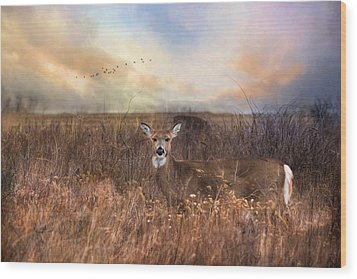 Wood Print featuring the photograph White Tail by Robin-Lee Vieira