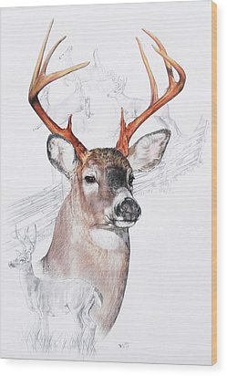 White-tailed Deer Wood Print by Barbara Keith