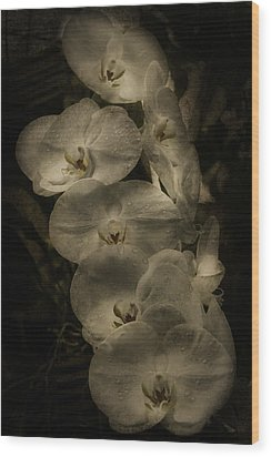 Wood Print featuring the photograph White Textured Flowers by Ryan Photography