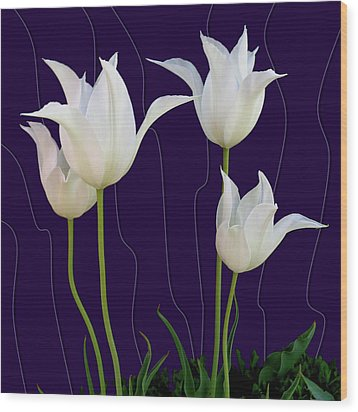 White Tulips For A New Age Wood Print