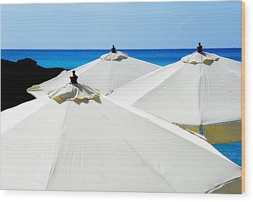 White Umbrellas Wood Print by Karen Wiles