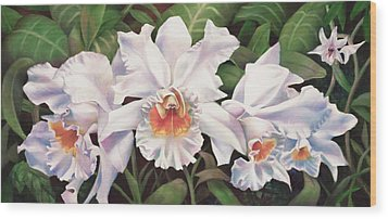 White Wedding Orchid Wood Print