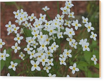 Wood Print featuring the digital art White Wildflowers by Barbara S Nickerson