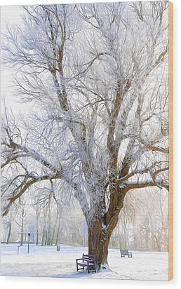 White Winter Tree Wood Print by Svetlana Sewell