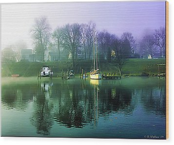 Wood Print featuring the photograph White's Cove Awakening by Brian Wallace