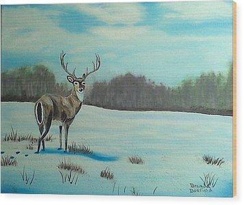 Whitetail Buck Wood Print by Brenda Bonfield