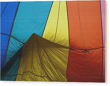 Who Landed This Balloon On Me Wood Print by Mike  Dawson