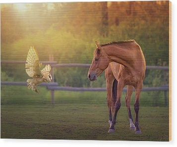 Whoo Are You? Wood Print by Debby Herold