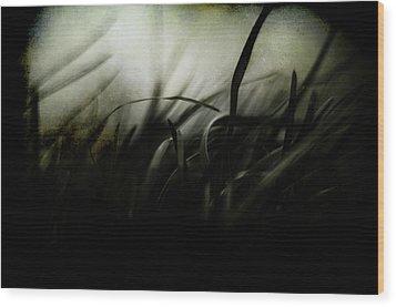 Wicked Garden Wood Print by Rebecca Sherman