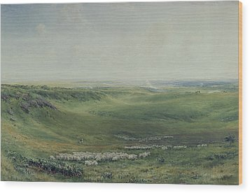 Wide Pastures Wood Print by Thomas Collier