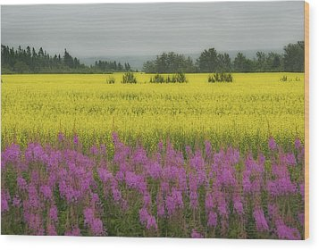 Wild And Colourful - Couleurs Sauvages  Wood Print