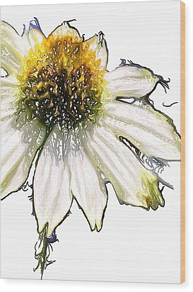 Wood Print featuring the photograph Wild Flower Five  by Heidi Smith
