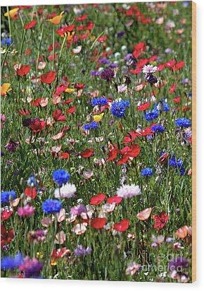 Wild Flower Meadow 2 Wood Print