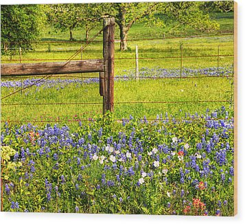 Wild Flowers And A Fence Wood Print
