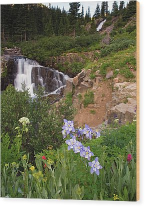 Wild Flowers And Waterfalls Wood Print by Steve Stuller