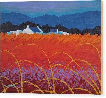 Wild Flowers County Wicklow Wood Print by John  Nolan