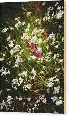 Wild Flowers Wood Print by Stelios Kleanthous