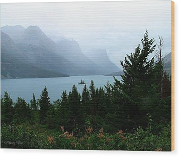Wild Goose Island In The Rain Wood Print
