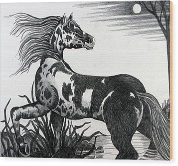 Wild Horse Wood Print by Bob Crawford