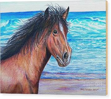 Wild Horse On The Beach Wood Print by Patricia L Davidson
