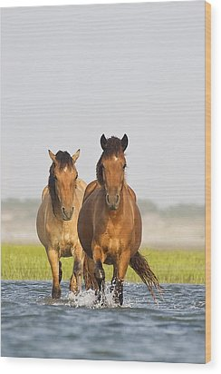 Wild Horses Wood Print by Bob Decker