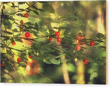 Wild Huckleberries On The Bush Wood Print by Lyle Leduc