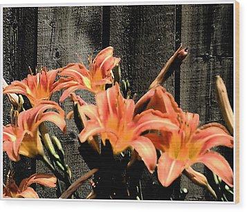 Wild Lily's Wood Print by Richard N Watkins