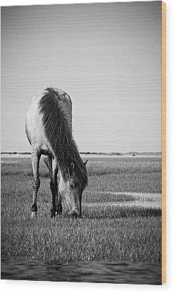 Wild Mustang Wood Print by Bob Decker