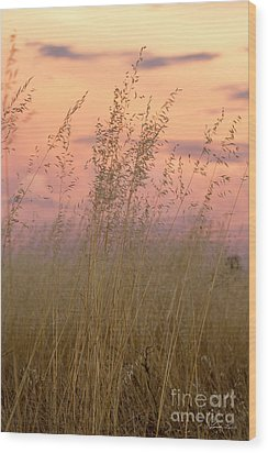 Wood Print featuring the photograph Wild Oats by Linda Lees