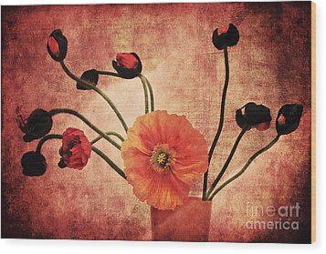 Wild Poppies Wood Print by Angela Doelling AD DESIGN Photo and PhotoArt