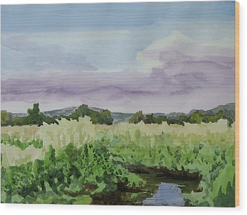 Wild Rice Field Wood Print by Bethany Lee