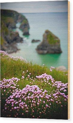 Wild Sea Pinks In Cornwall Wood Print